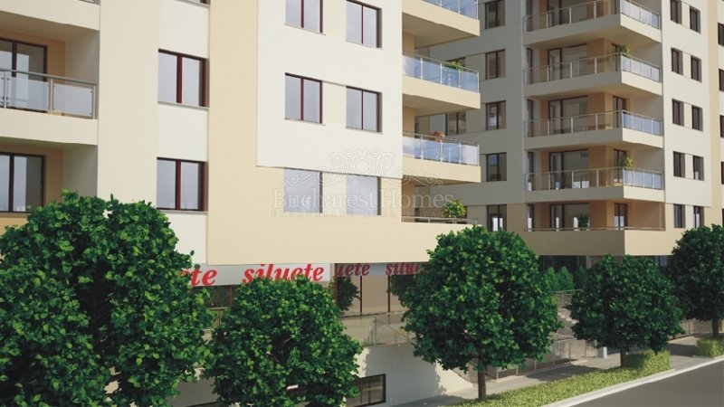 North Area Lake View Apartment 1 Bedroom Rental Bucharest Homes Expatriate Rentals