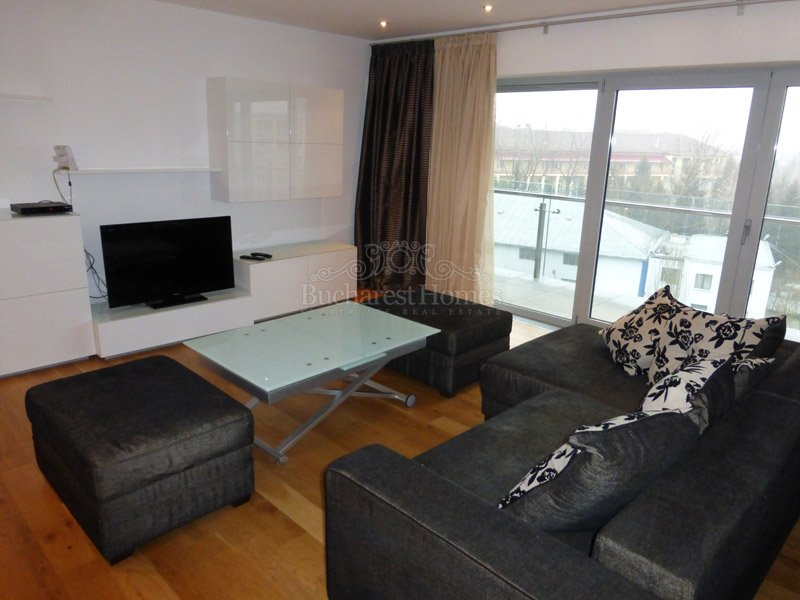 nice one bedroom apartment in magnificent kiseleff
