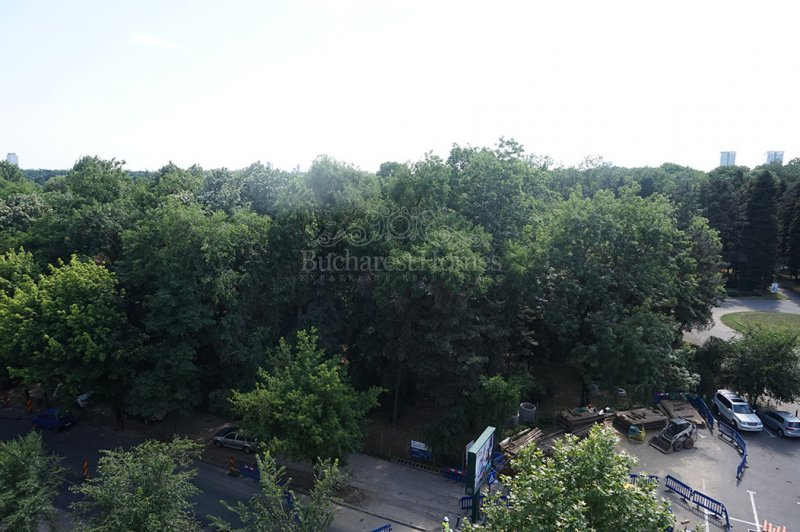 Large Four Bedroom Penthouse overlooking the Park in Herastrau