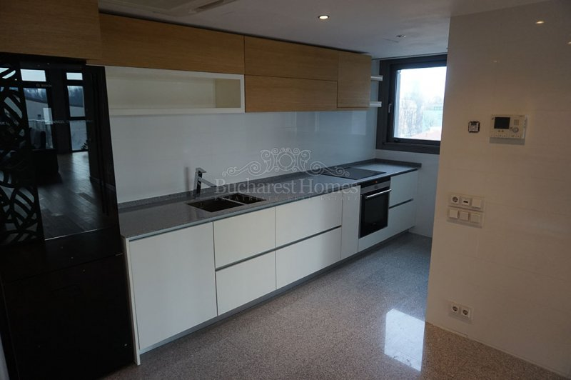 Nicely Furnished Three Bed Apt with Terrace - Kiseleff