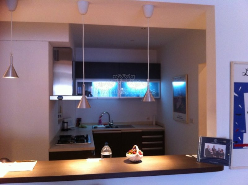 Cosy 1 Bedroom Furnished Apt in Herastrau