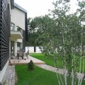 Contemporary Three / Four Bedroom Villa in Baneasa